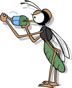 Naughty Mosquitos